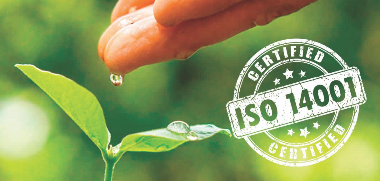 ISO14001 grande
